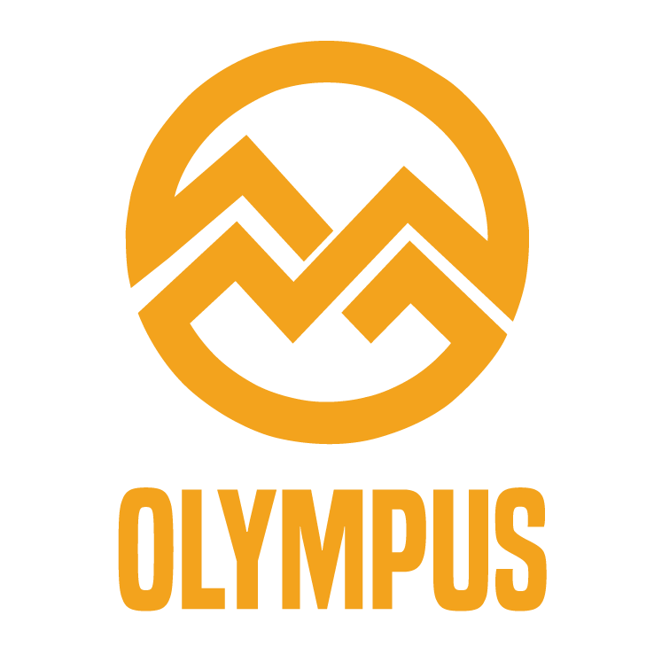 Olympus Alloy Mountain Bike Wheels