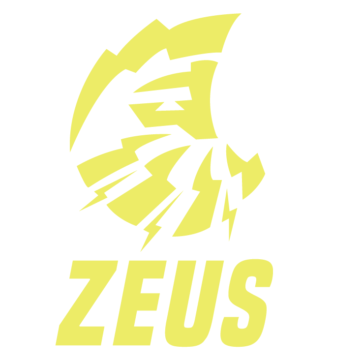 Zeus Road Carbon Wheels