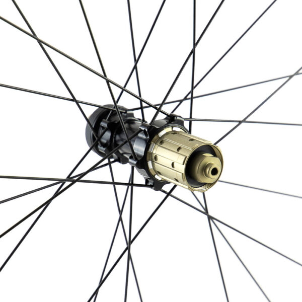 P19 Disc Hub Freehub Detail